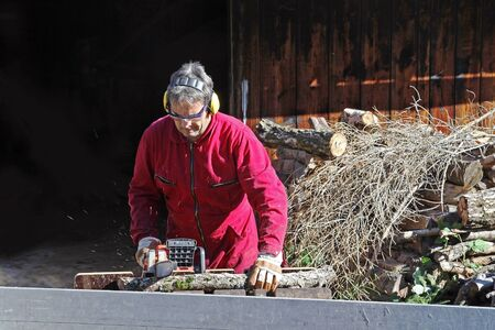 A man saws wood for the winter Stock Photo - 16627380