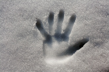 Hands in the snow photo