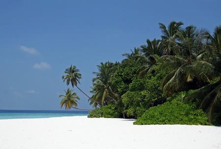 몰디브의 아름다운 섬 스톡 콘텐츠