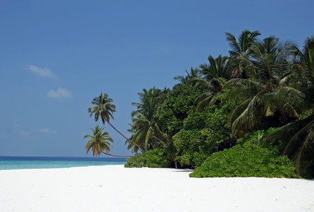 A beautiful island in the Maldives