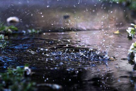 빗방울이 땅에 떨어지면 스톡 콘텐츠