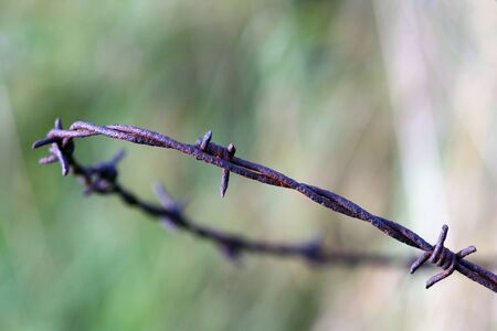 A barbed wire noose Stock Photo - 16968412