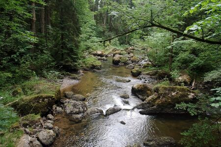 A river flows through a forest in Bavaria Stock Photo