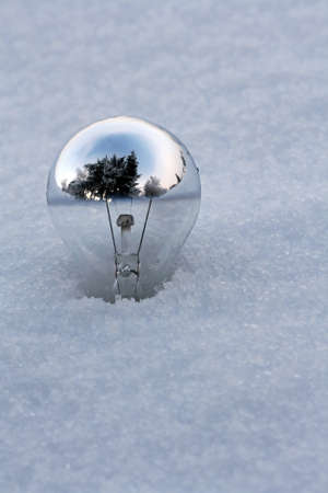 The world in a light bulb or the old bulb is on ice photo