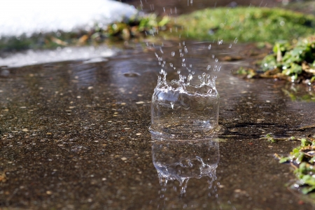 A raindrop forms a bell