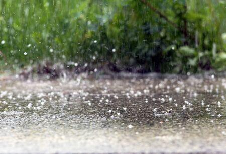 heavy rain: A heavy rain in summer Stock Photo