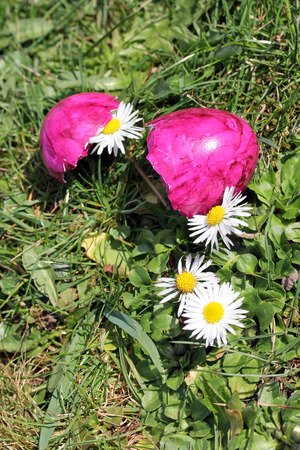 The pink Easter egg and the spring flowers photo