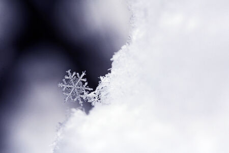 Closeup of a snowflake Stock Photo