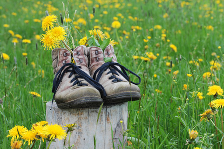 Hiking in the spring photo