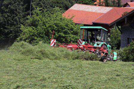 haymaking: Haymaking in Bavaria