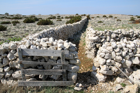 stonewalls on the Iceland of pag (croatia) Stock Photo