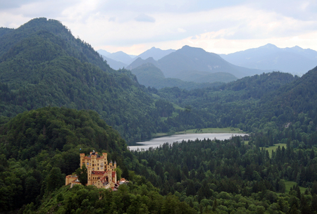 swan on the lake: Hohenschwangau Castle and the swan lake Editorial