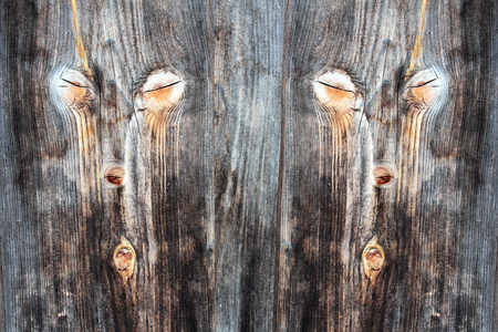 knothole: Digiart - A double face in the timber wall. Knots give a face on a wooden wall