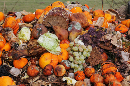 rotten fruit: Discarded fruit and bread on the Organic Waste Stock Photo