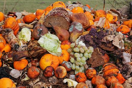 Weggooid fruit en brood op het organische afval Stockfoto