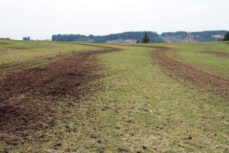 A farmer has a field fertilized with manure