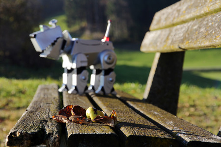 A robot dog on a bench in autumn