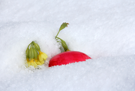 snows: The Easter egg in the snow - When it snows on Easter!