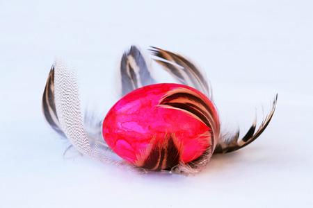 osterei: Ein Oster-Nest Federn - ein rosa Osterei mit Federn