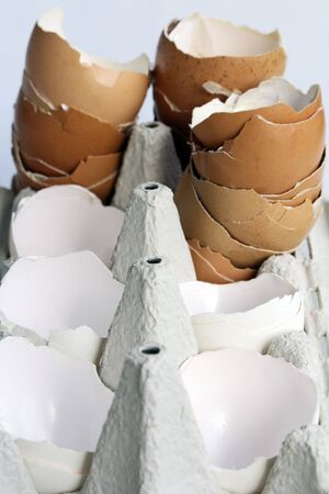 egg carton: Empty eggshells in an egg carton - A lot of brown and white egg shells