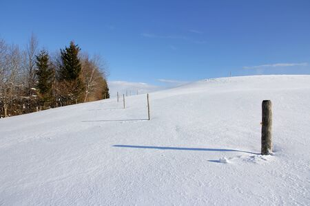 fencepost: Snowy meadows and fields. Meadows and fields in winter