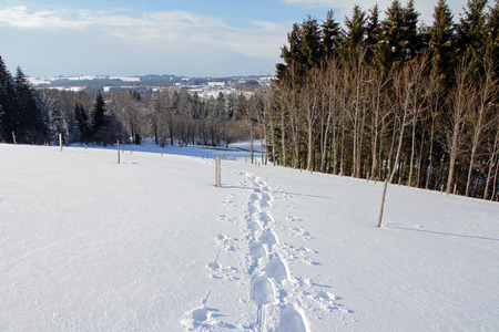winter sports: Snowshoe tracks in the snowy landscape. Winter sports in Bavaria Stock Photo