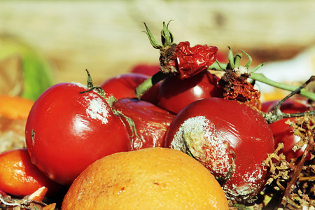 desechos organicos: Descartado frutas y verduras en los residuos org�nicos Foto de archivo