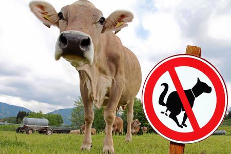 interdiction: Signe d'interdiction dans l'agriculture - Un pâturage est pas de toilettes pour chiens