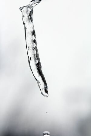 A dripping icicle. An icicle thaws