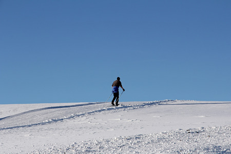A cross-country skier in the winter against the blue sky. Cross-country skiing is a popular winter sport