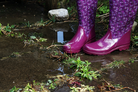 Colorful water-resistant rubber boots in rain, flood and gardening