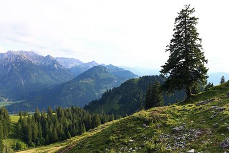 산 풍경과 Allgaeu 알프스에서 등산입니다. Allgaeu의 Oberjoch 산맥