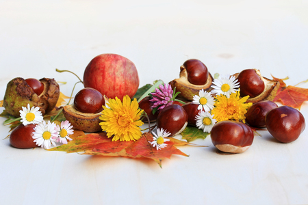 A colorful autumn with flowers, chestnuts and apples