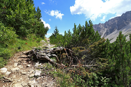 Mountaineering on the Hahntennjoch in Austria. Mountain path in the mountains Stock Photo
