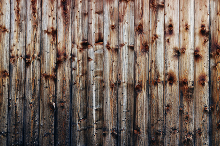 A brown wooden wall with many knotholes. Wood texture of a wooden wall 版權商用圖片