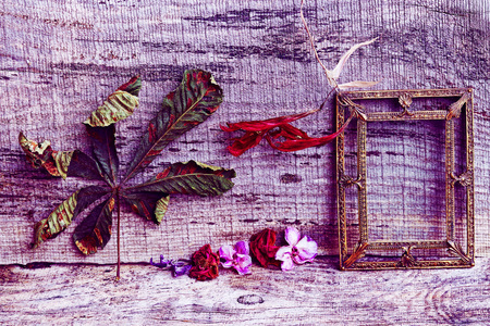 Purple and red still life with flowers and a picture frame on wooden background