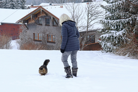 A woman goes for a walk with her Norwegian Forest Cat in winter. Walk with cat