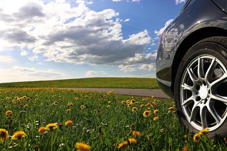 Into nature by car. A black car stands in a dandelion meadow Banco de Imagens