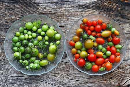 Red and green tomatoes. Ripen the green tomatoes. Reklamní fotografie