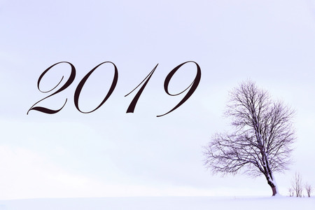 Turn of the year to 2019. Single tree on a snow landscape in purple with 2019