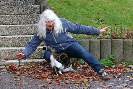 Risk of accident from pets. An elderly woman stumbles over a cat Banque d'images
