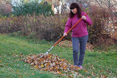 A woman in the garden leaves together. Gardening in autumn