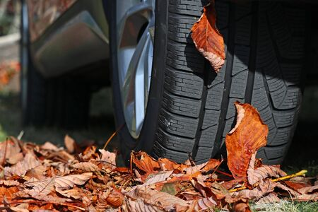 Winter tyres for autumn and winter. Winter tires for wet slippery foliage
