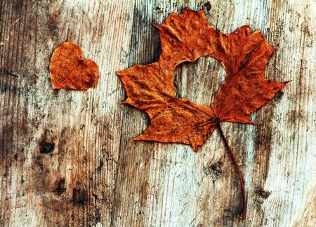 Love in autumn - autumn leaves with a heart on a wooden background Фото со стока - 132997163