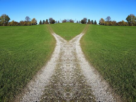 A divided path. Which way should you go?