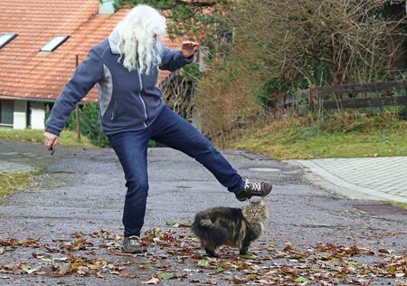 Violence against animals. A woman wants to step on the street after a cat