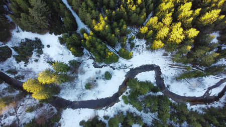 Drone photo of forest with stream in winter with light and shadow