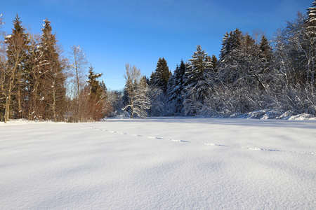Winter landscape in Bavaria with animal tracks in high snow