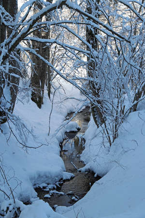 A beautiful winter landscape with lots of snow with trees by a stream Фото со стока
