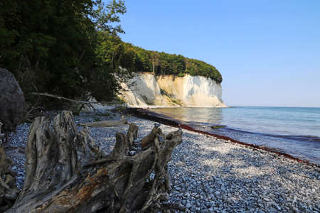 The white chalk cliffs on the island of Ruegen on the Baltic Sea in Germany